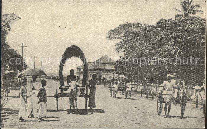 Colombo Ceylon Sri Lanka Eselswagen / Colombo /