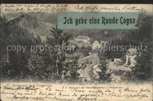 Wolkenstein Erzgebirge Blick von der Falkenhorstwand Kat. Wolkenstein