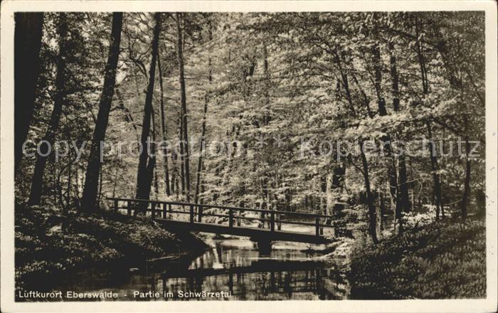 61860389 Eberswalde Partie im Schw?rzetal Partie im Schw?rzetal Alte Ansichtskarte Postkarte