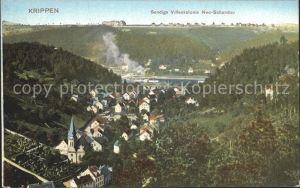 Krippen Bad Schandau Panorama mit Sendigs Villenkolonie Neu Schwandau Kat. Bad Schandau