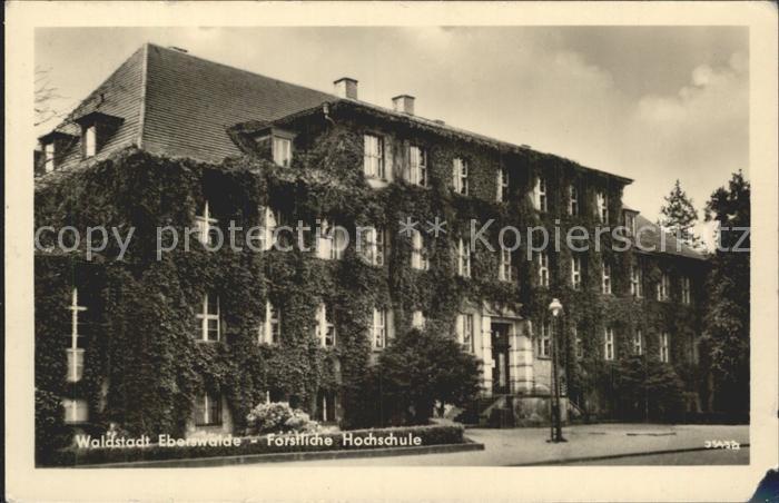 Eberswalde Forstliche Hochschule Kat. Eberswalde Waldstadt