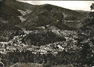 Hornberg Schwarzwald Blick vom Windeckfelsen Kat. Hornberg