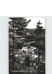 Edlitz Ansicht vom Waldrand aus Kneipp Kurort Kat. Edlitz
