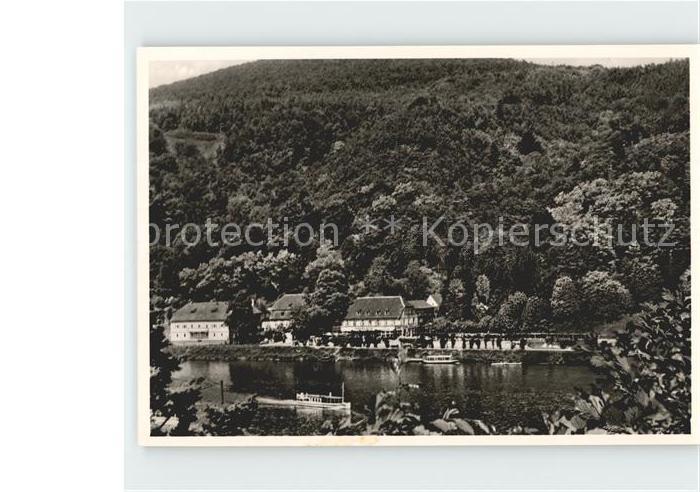 Heidelberg Neckar Parkcafe Hotel Haarlass Aussichtspunkt am Neckar und Bergwald Kat. Heidelberg