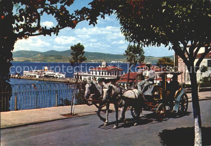 Istanbul Constantinopel Pferdekutsche Kat. Istanbul