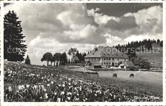 Les Loges Val de Ruz Hotel de la Vue des Alpes Kat. Les Loges
