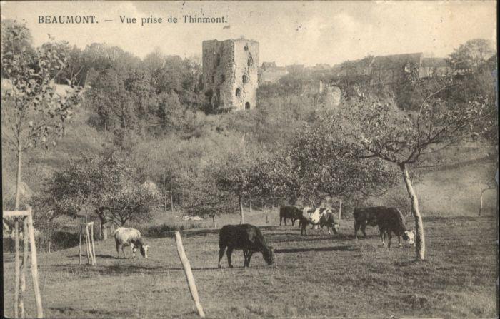 Beaumont-en-Argonne Beaumont Thinmont x / Beaumont-en-Argonne /Arrond. de Sedan