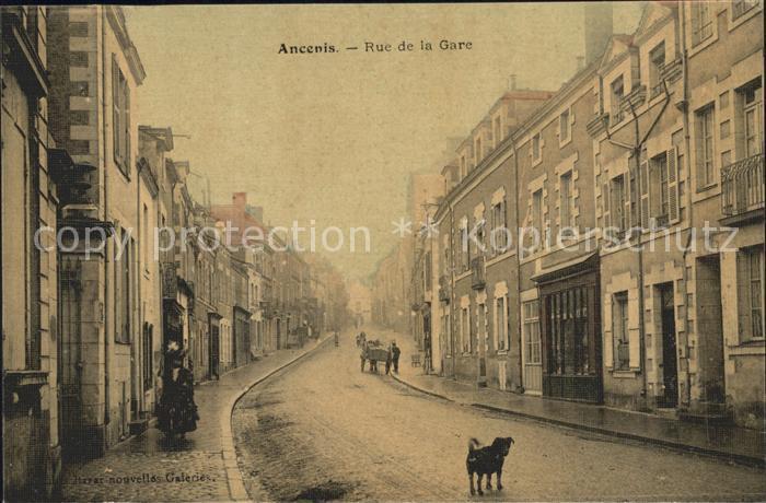 Ancenis Rue de la Gare Chien Kat. Ancenis