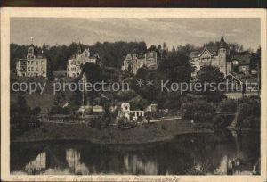 Aue Erzgebirge Carola Anlagen mit Bismarckstrasse Kat. Aue