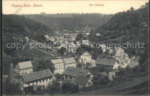 Krippen Bad Schandau mit Neu Schandau Kat. Bad Schandau