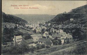 Krippen Bad Schandau Sendigs Villenkolonie Neu Schandau Kat. Bad Schandau