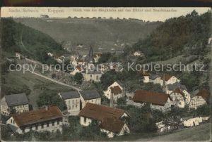 Krippen Bad Schandau Blick auf Elbtal und Neu Schandau Kat. Bad Schandau