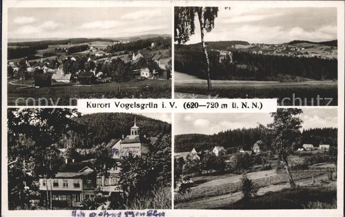 Vogelsgruen Panorama Kat. Auerbach