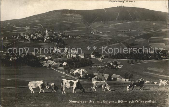 Oberwiesenthal Erzgebirge Panorama mit Unterwiesenthal Boehmisch Wiesenthal Fichtelberg Kat. Oberwiesenthal