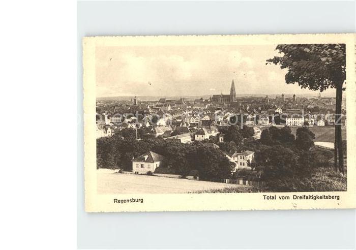 Regensburg Total vom Dreifaltigkeitsberg Kat. Regensburg