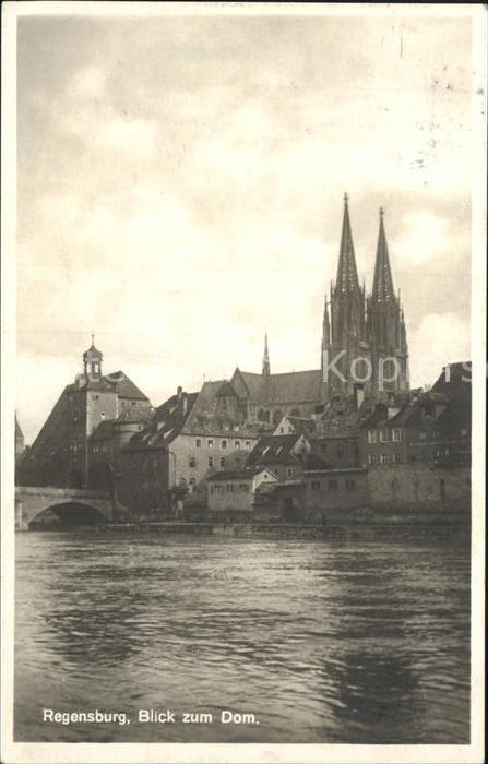 Regensburg Blick zum Dom / Regensburg /Regensburg LKR