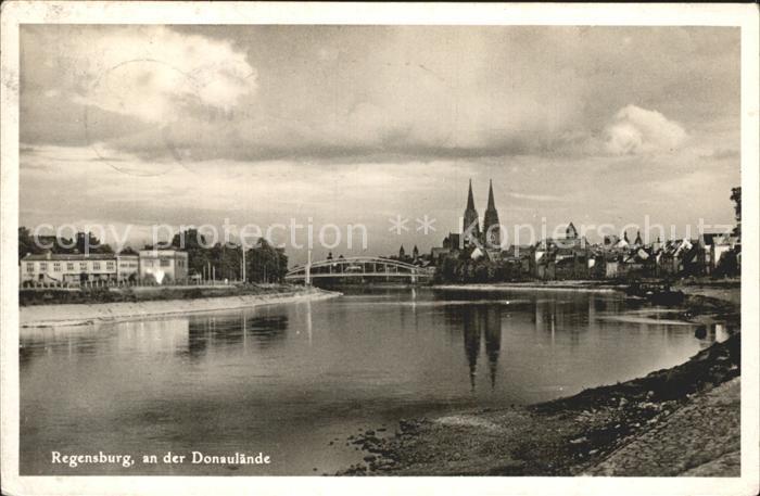 Regensburg Partie an der Donaulaende mit Blick zum Dom St Peter / Regensburg /Regensburg LKR