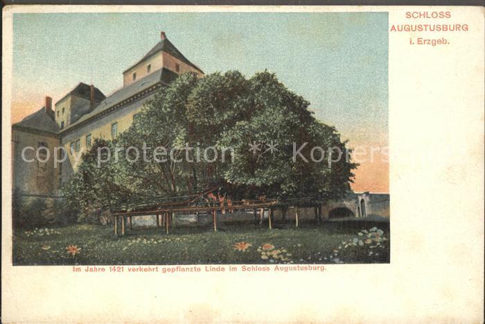 Augustusburg Schloss Alte Linde Kat. Augustusburg
