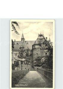 Alzey Schlosshof Kat. Alzey