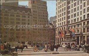 New York City Hansom Cab  / New York /