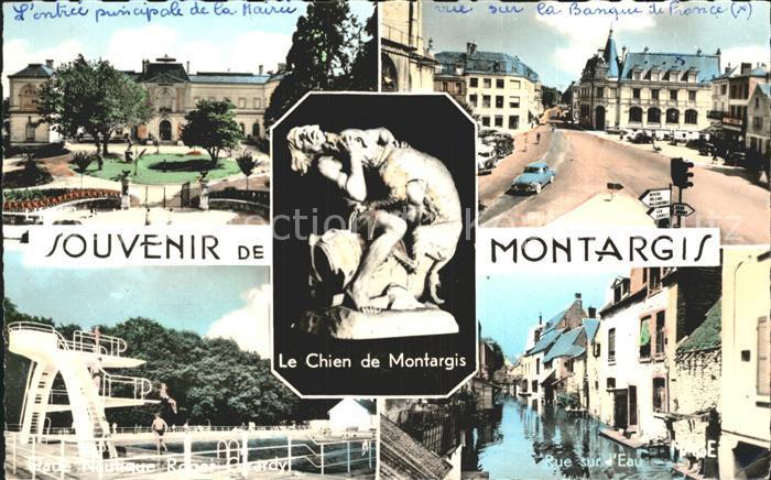Montargis Loiret Entree principale de la Mairie Rue sur la Banque Stade Nautique Rue sur d Eau Le Chien de Montargis Kat. Montargis
