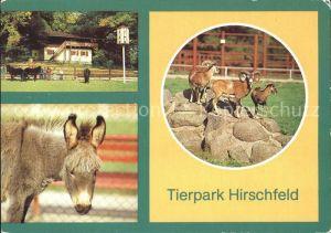 Hirschfeld Gera Tierpark Hirschfeld Pferde Esel Steinboecke Kat. Hirschfeld Gera