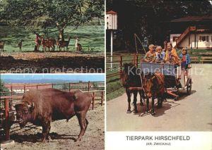 Hirschfeld Zwickau Tierpark Hirschfeld Damwildgehege Wisent Tip Pony Rundfahrt Kat. Hirschfeld Zwickau