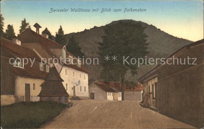 Zwiesel Niederbayern Zwieseler Waldhaus mit Blick zum Falkenstein Kat. Zwiesel