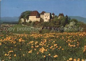 Lenzburg Schloss / Lenzburg /Bz. Lenzburg