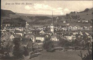 Wald ZH Ortsansicht mit Kirche / Wald ZH /Bz. Hinwil