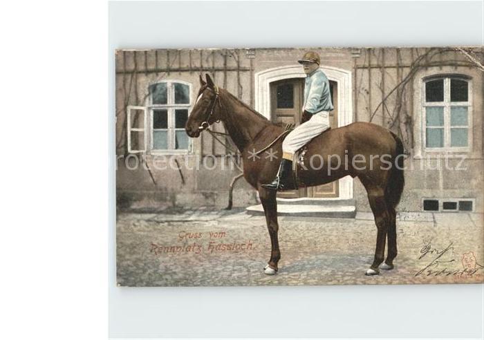 Hassloch Pfalz Rennplatz Pferd mit Reiter / Hassloch /Bad Duerkheim LKR