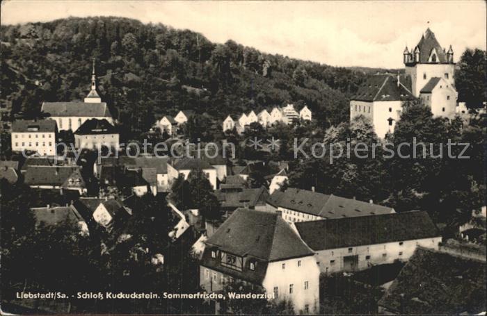 Liebstadt Kirche Ortsansicht Schloss Kuckuckstein Kat. Liebstadt