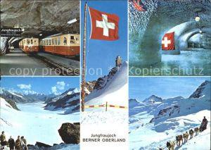 Jungfraubahn Jungfraujoch Polarhunde Kat. Jungfrau