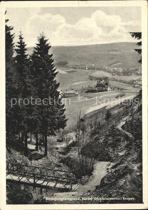 Oberwiesenthal Erzgebirge Schoenjungferngrund Kat. Oberwiesenthal