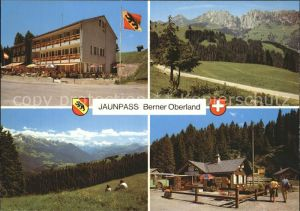 Jaunpass Hotel des Alpes Gastlosen Simmental  Kat. Jaun