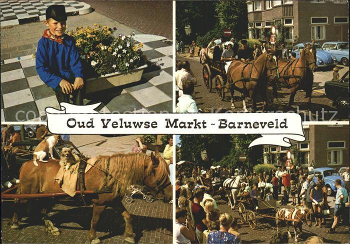 Barneveld Gelderland Veluwse Markt Pferd Hund  Kat. Barneveld