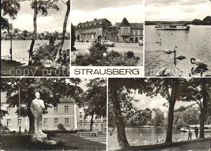 Strausberg Brandenburg Straussee Grosse Strasse Faehre Leninplatz Denkmal Statue Schwaene Kat. Strausberg