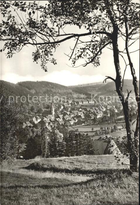 Geising Erzgebirge Blick auf Geising Kat. Geising Osterzgebirge
