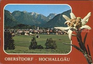 Oberstdorf Ortsansicht Blume  Kat. Oberstdorf