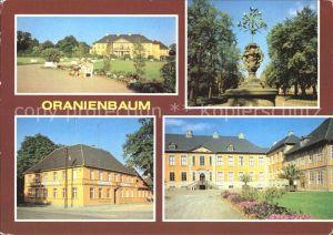 Oranienbaum Schlosspark Orangenbaeumchen am Markt Gaststaette Goldener Hirsch Kat. Oranienbaum