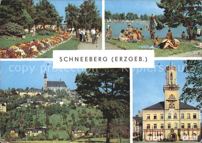 Schneeberg Erzgebirge Blick zur Kirche Filzteich Rathaus Kat. Schneeberg