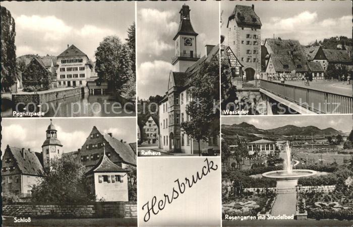 Hersbruck Rosengarten Strudelbad Wassertor Rathaus  Kat. Hersbruck