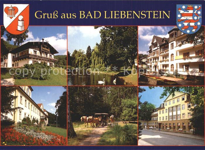 Bad Liebenstein Haus Feodora Elisabethpark Kurheim Edelweiss Kat. Bad Liebenstein