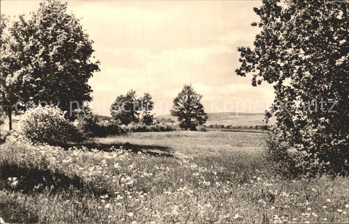 Reichenbach Vogtland Landschaftsaufnahme Kat. Reichenbach