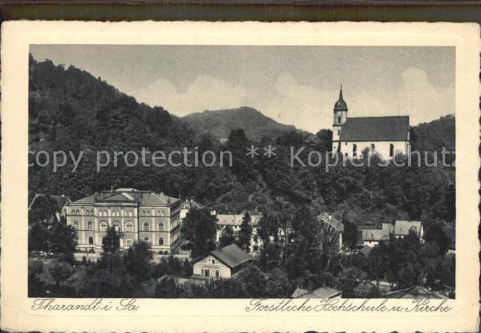 Tharandt Forstliche Hochschule Kirche Kat. Tharandt