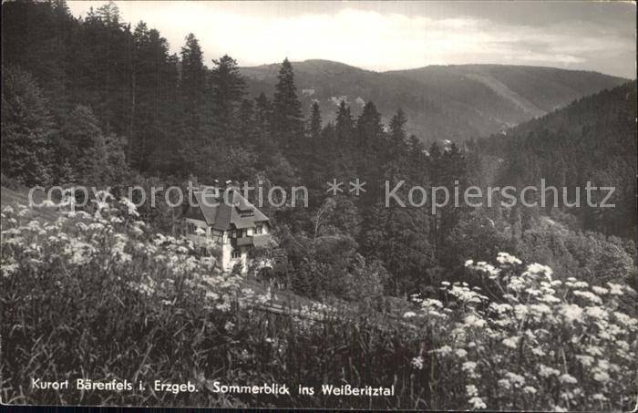 Baerenfels Erzgebirge Weisseritztal Kat. Altenberg