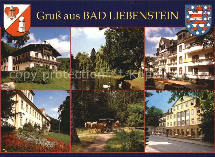 Bad Liebenstein Haus Feodora Elisabethpark Kurheim Edelweiss Kurverwaltung Stilles Tal Kurklinik Kat. Bad Liebenstein