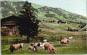 Adelboden Adelboden  * / Adelboden /Bz. Frutigen