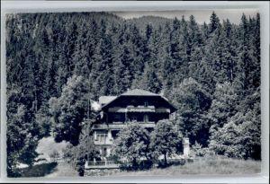Grindelwald Grindelwald Wald Hotel Bellary x / Grindelwald /Bz. Interlaken