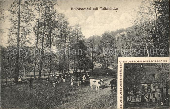 Obergittersee Kaitzbachtal mit Talschaenke Kuehe / Auhagen ...